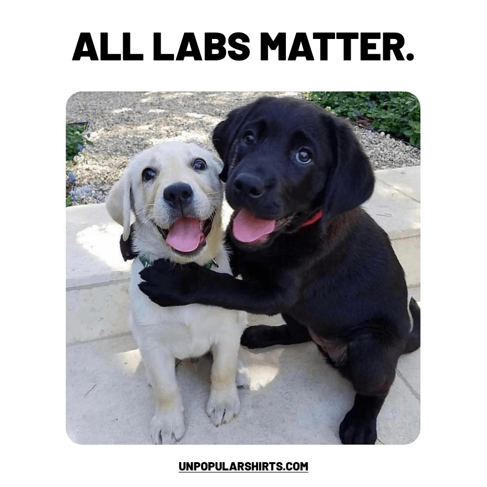 All labs matter.